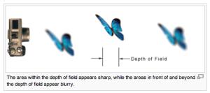 http://en.wikipedia.org/wiki/Depth_of_field